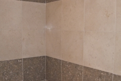 Restored Polished Shower Wall