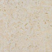 caribbean coral stone
